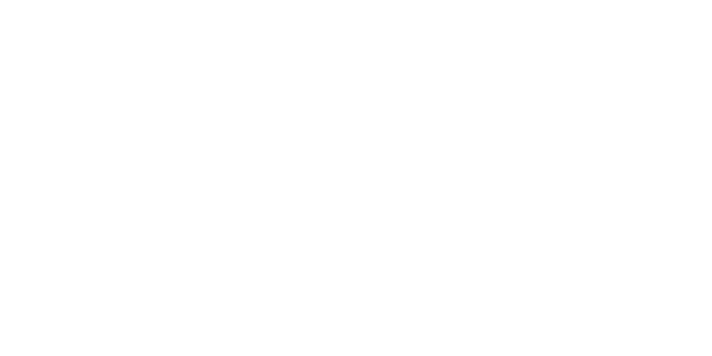 SKY TRAVELLER